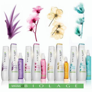 matrix-biolage-products